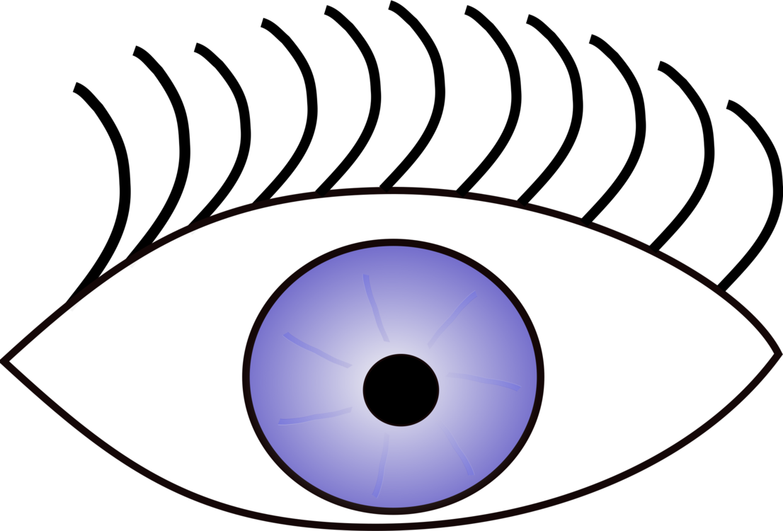 Iris,Eye,Symmetry