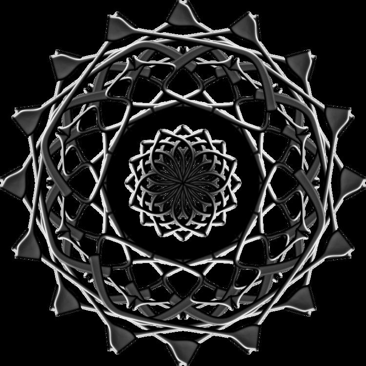 Visual Arts,Plant,Symmetry