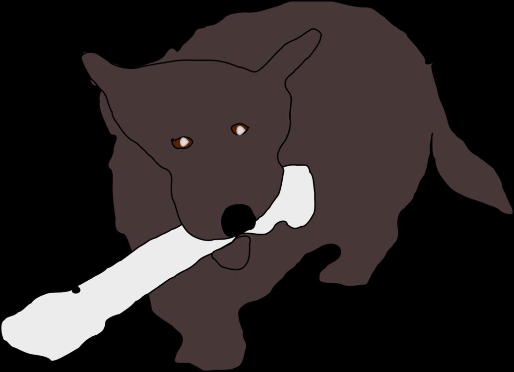 Carnivoran,Dog Breed,Dog Like Mammal