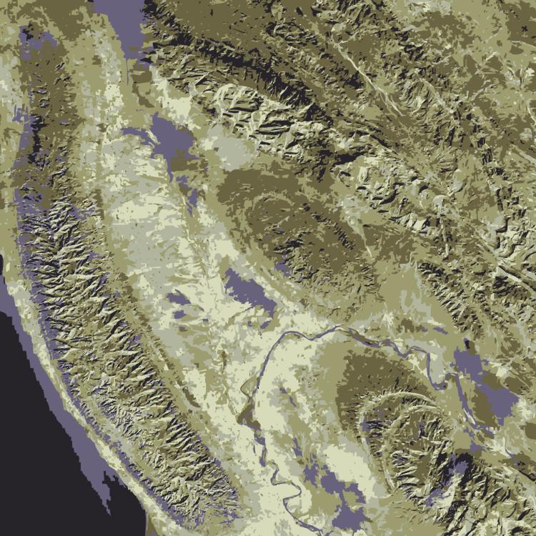 Organism,Geology,Zagros Mountains