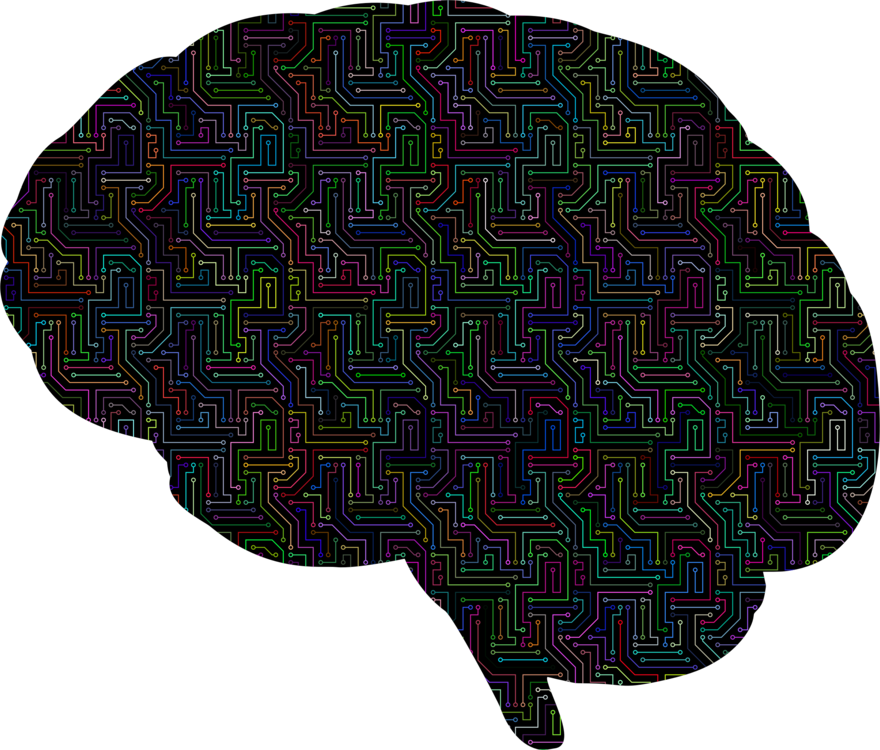 Brain Visual Perception World Of Ghost In The Shell Png Clipart Royalty Free Svg Png