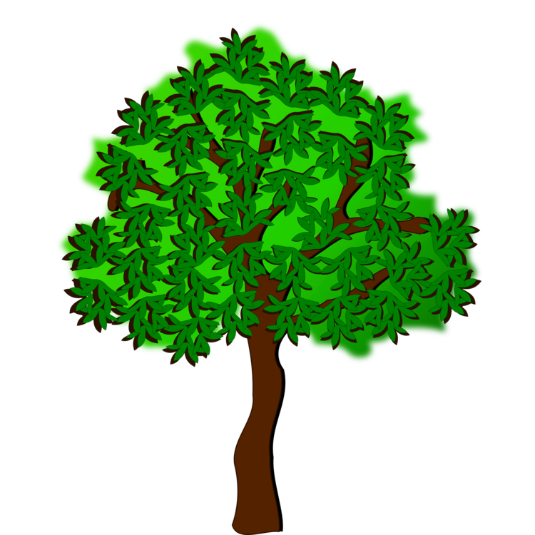 Plant,Leaf,Tree PNG Clipart - Royalty Free SVG / PNG