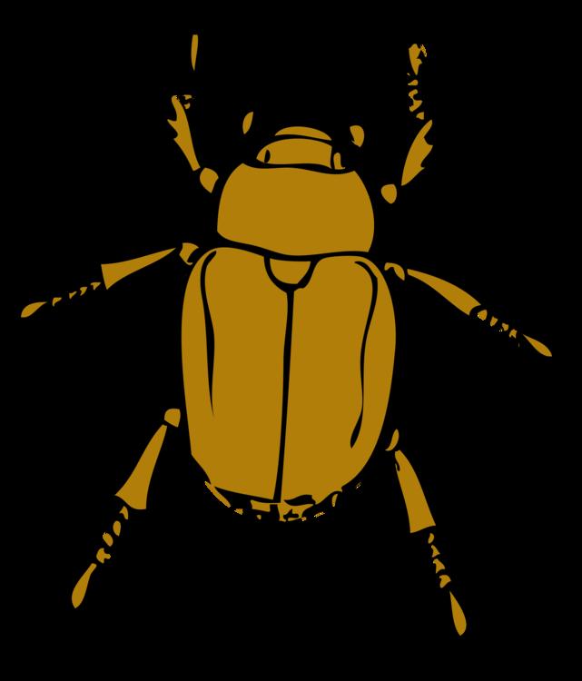 Fly,Honey Bee,Ladybird