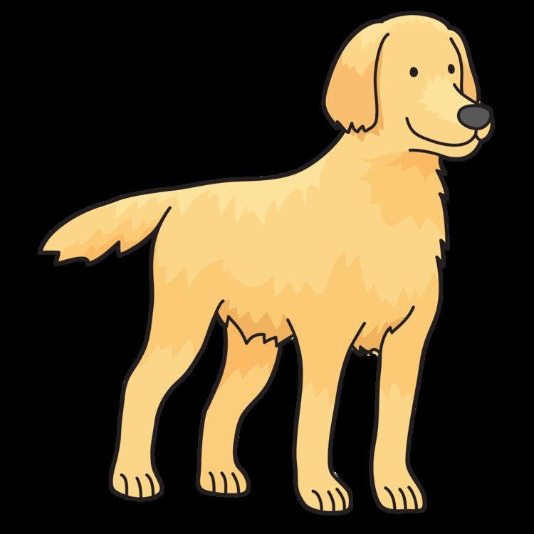 Companion Dog,Paw,Animal Figure