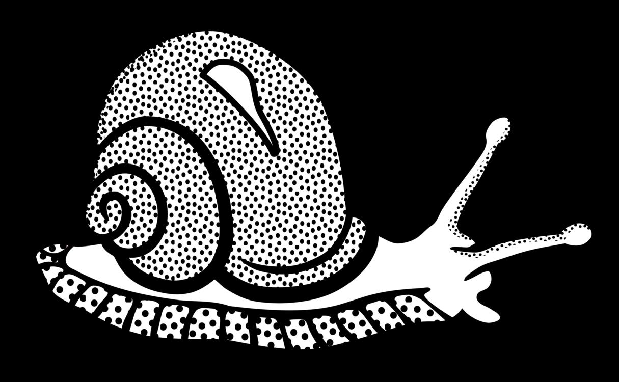Line Art,Art,Snail
