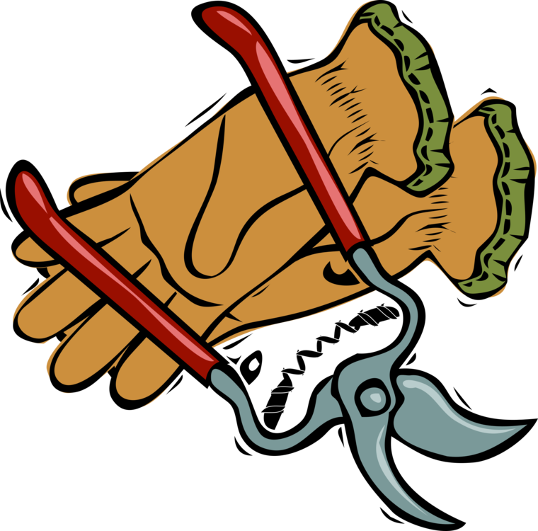 Pruning Shears Gardening Garden Tool Free Commercial Clipart