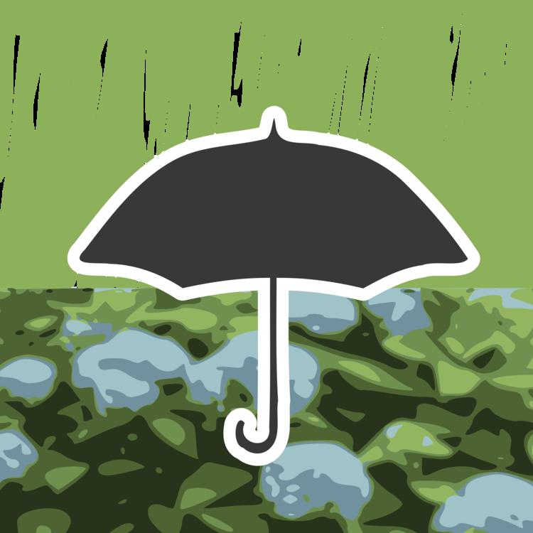 Plant,Umbrella,Water