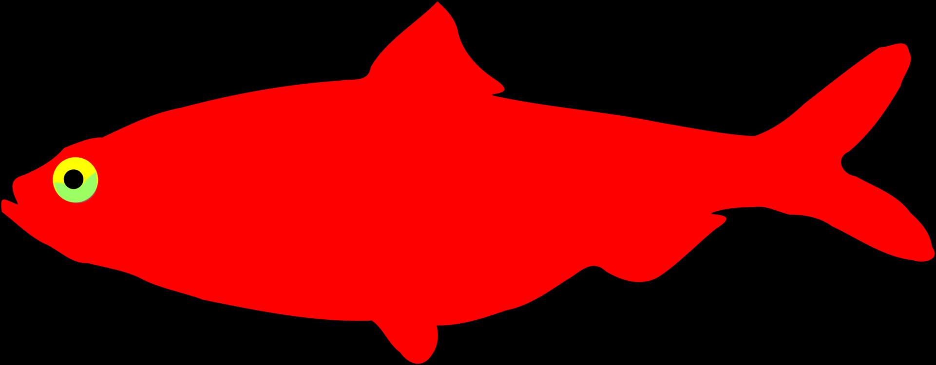 Marine Biology,Fish,Artwork