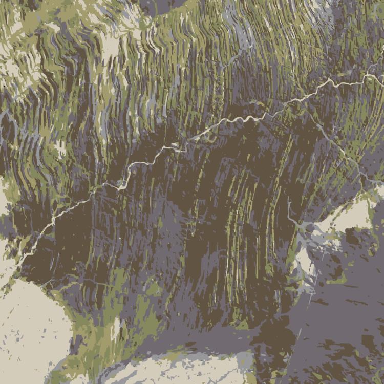 Escarpment,Geology,Tree