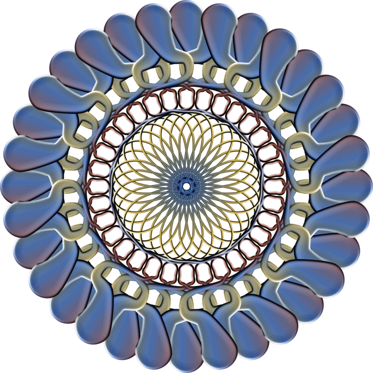 Circle,Symmetry,Beam Orthodontics  Jeffery Schaefer Dds Msd