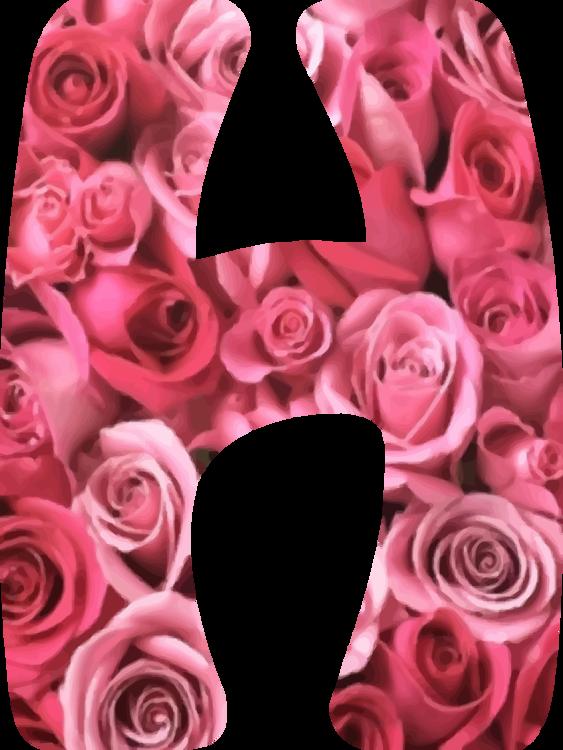 Pink,Flower,Peach