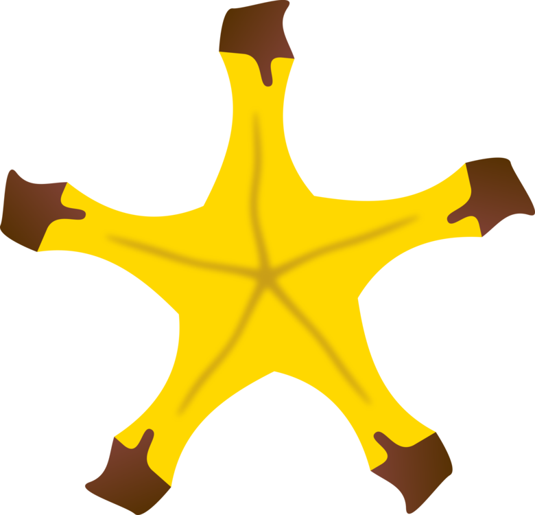 Plant,Leaf,Symbol