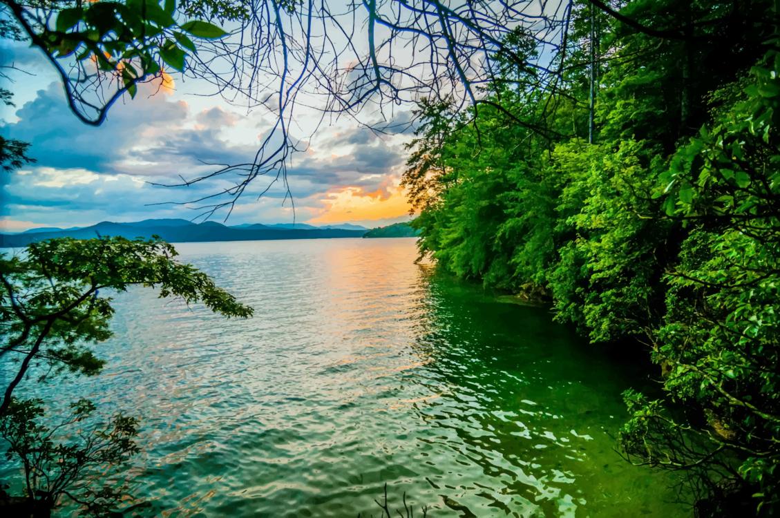 Reservoir,Tropics,Mount Scenery