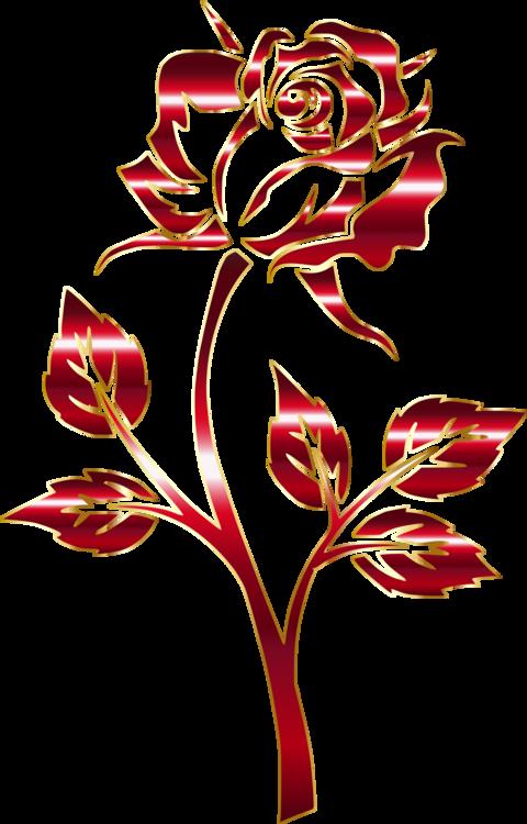 Rose Order,Petal,Cut Flowers