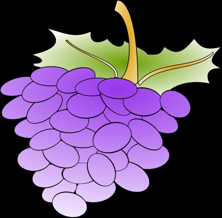 Plant,Flower,Grape