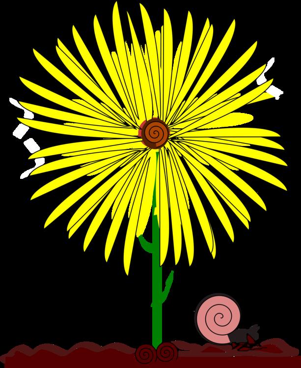Symmetry,Petal,Yellow