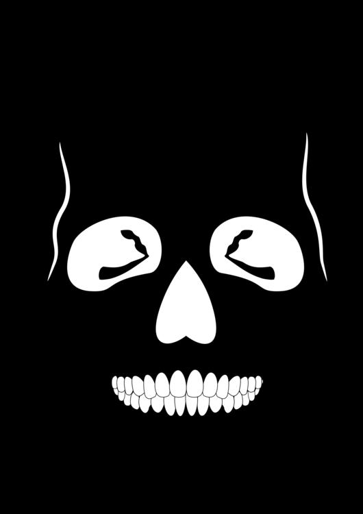 Human Skull Bone Anatomy Skeleton Free Commercial Clipart Skull