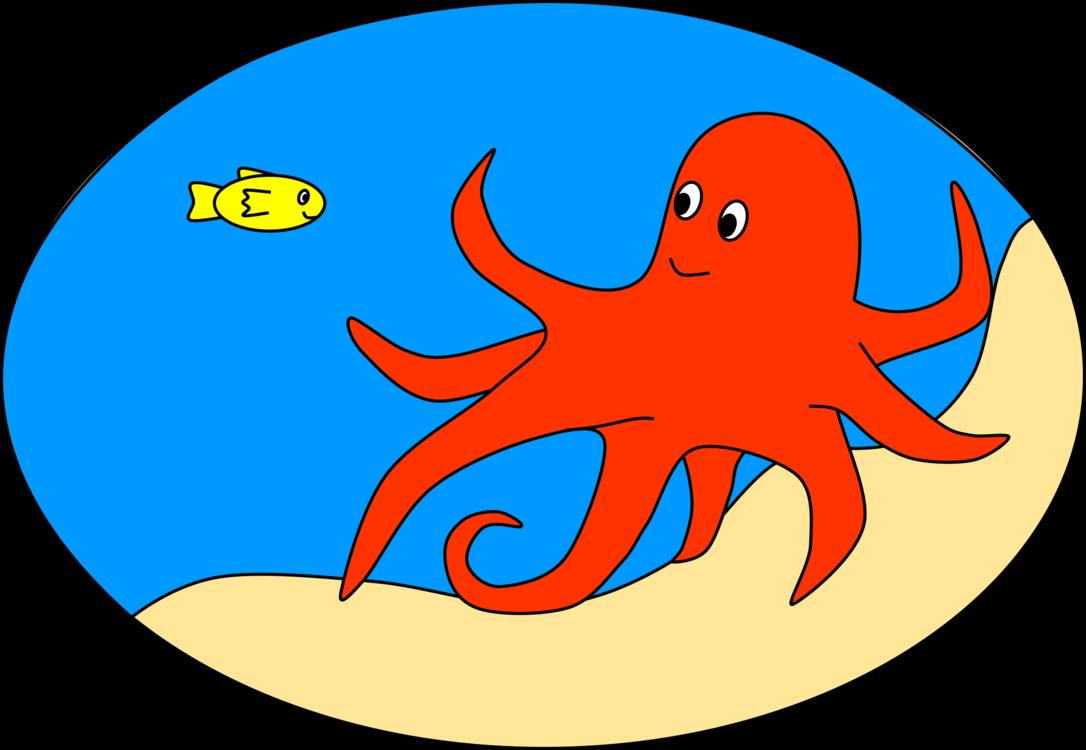 Marine Invertebrates,Marine Biology,Area