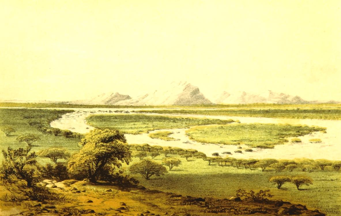 Watercolor Paint,Salt Marsh,Sand