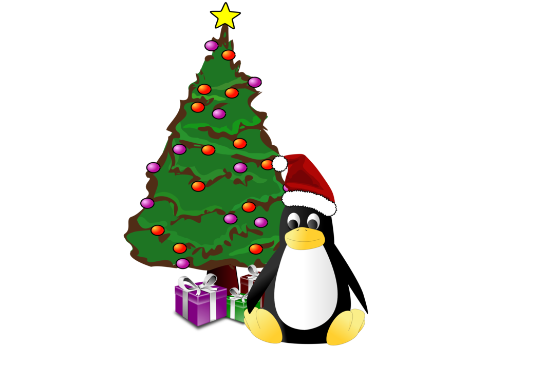 Flightless Bird,Christmas Decoration,Vertebrate