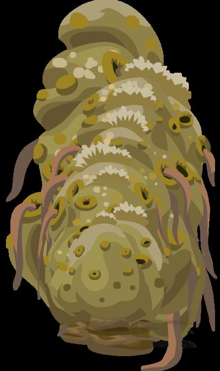 Organism,Plants,Sea
