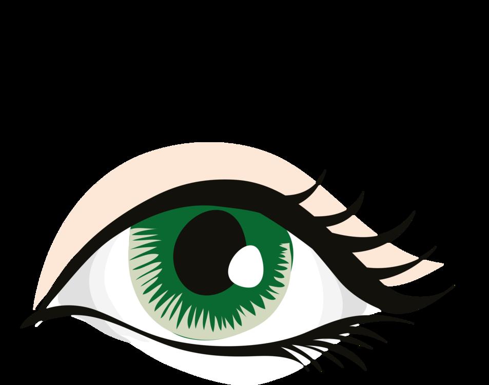 Eyelash Extensions,Eye,Organ