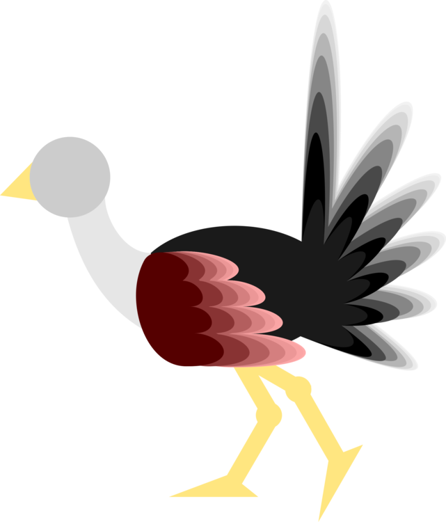 Water Bird,Wing,Galliformes