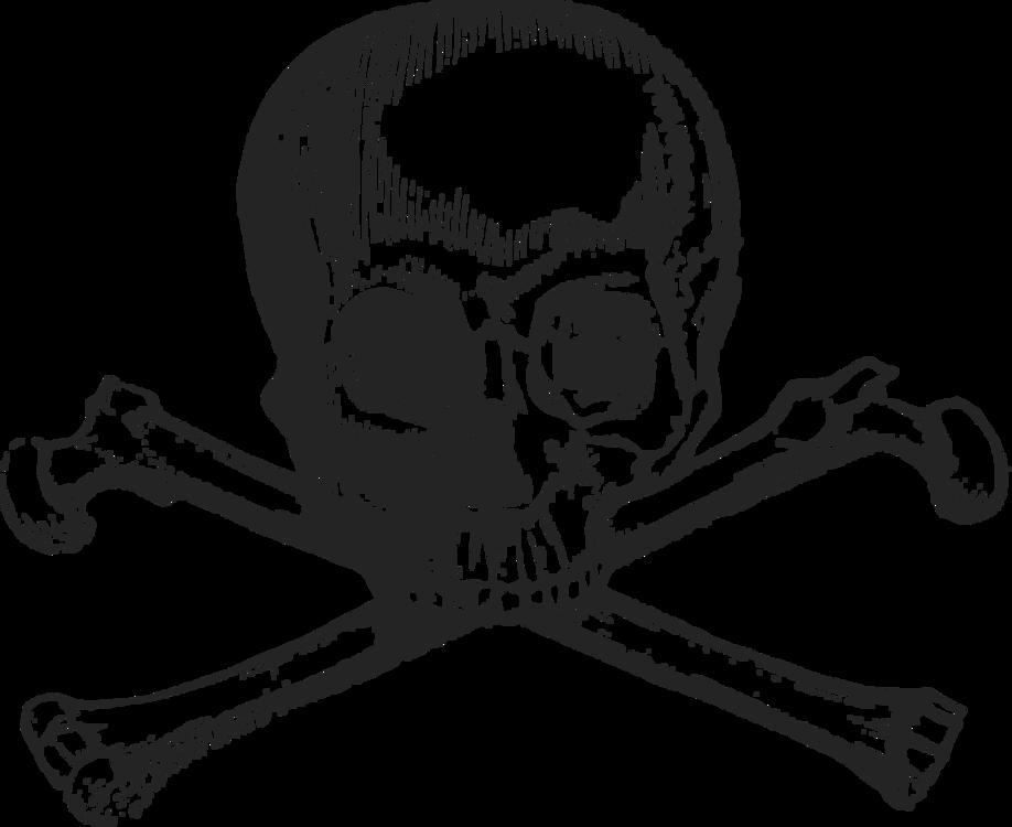 Skull and crossbones Human skull symbolism Death
