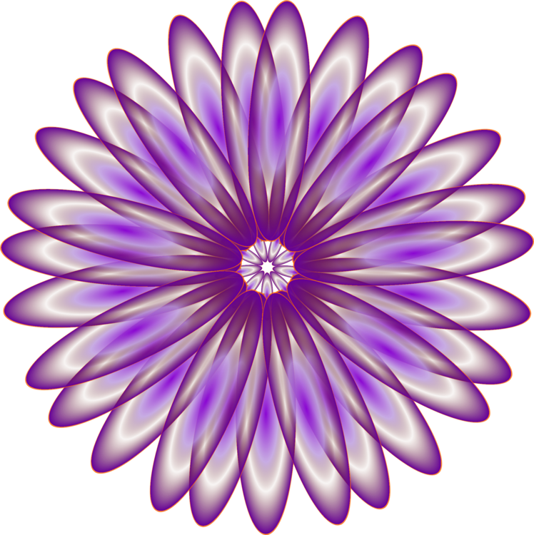 Chrysanths,Flower,Symmetry