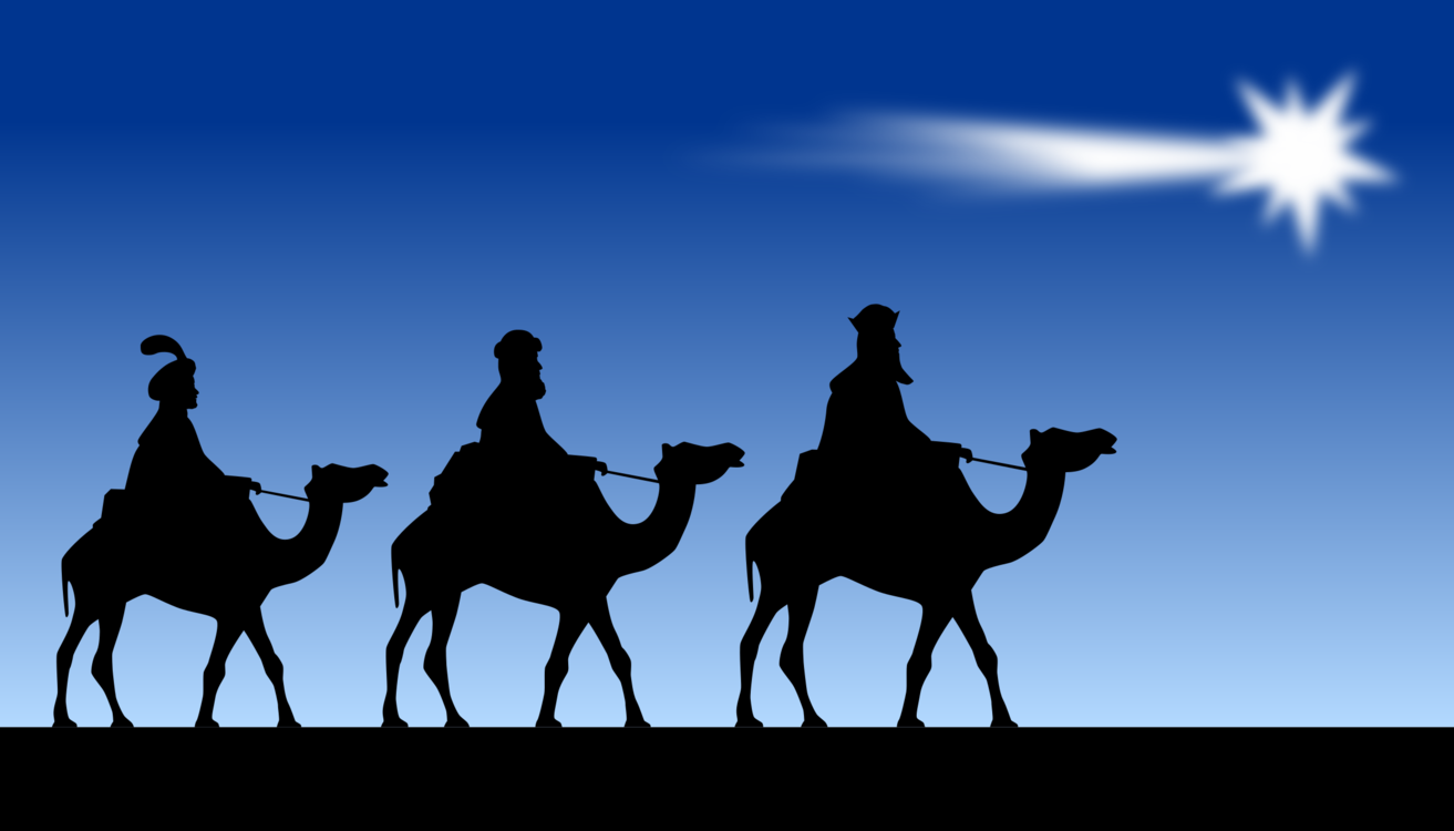 Silhouette Livestock Camel Png Clipart Royalty Free Svg Png