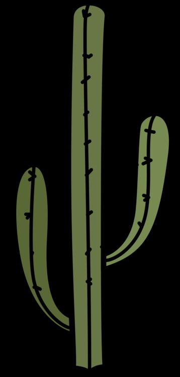 Plant,Tree,Plant Stem