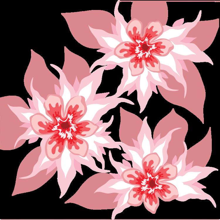 Pink,Visual Arts,Plant