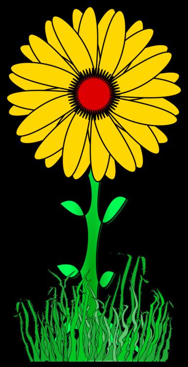 Petal,Artwork,Yellow