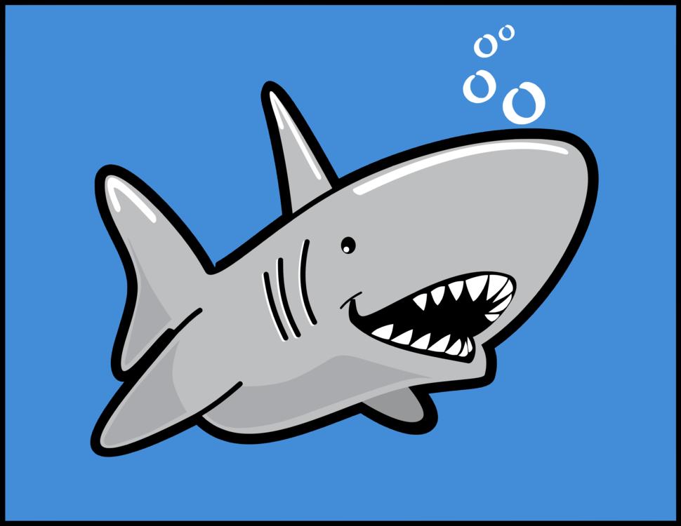 Marine Biology,Shark,Area