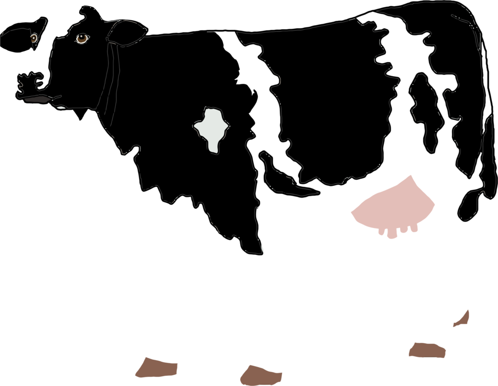 Holstein Friesian Cattle Beef Dairy Drawing