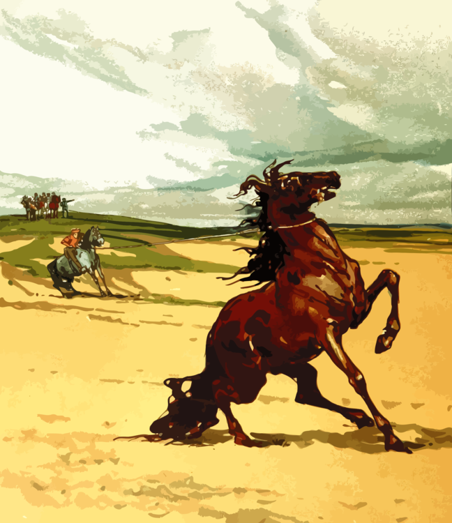 Horse,Pack Animal,Cowboy