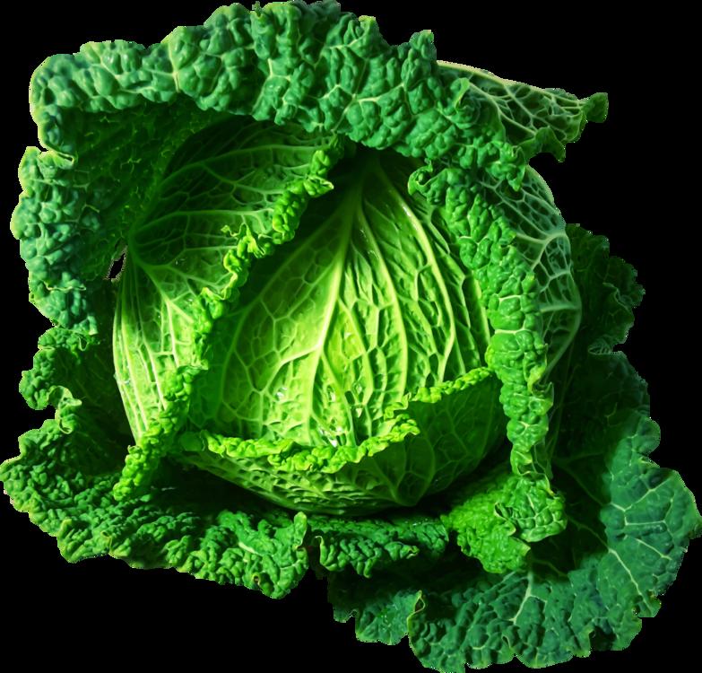 Kale,Savoy Cabbage,Food
