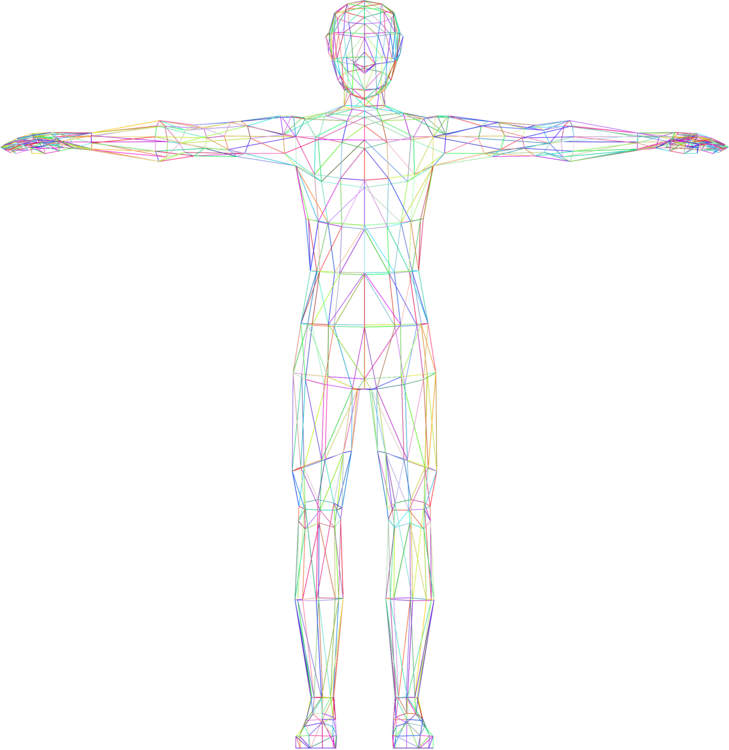 shoulder standing human body png clipart royalty free svg png shoulder standing human body png