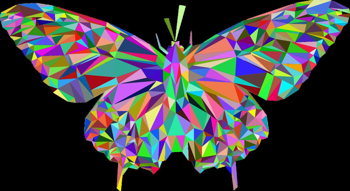 Butterfly,Arthropod,Symmetry