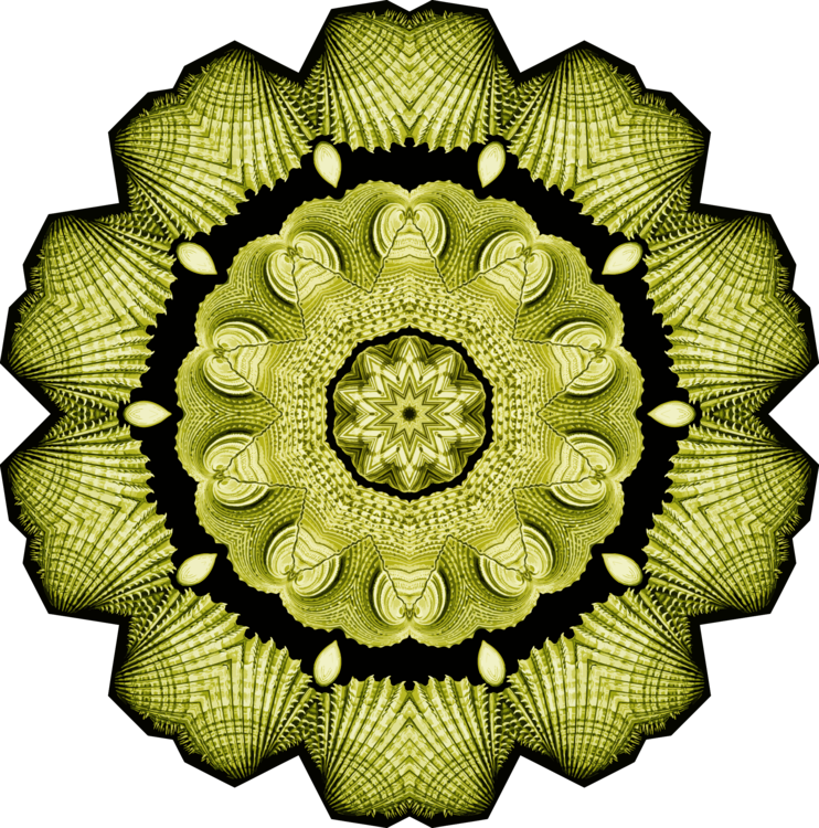 Flower,Symmetry,Green