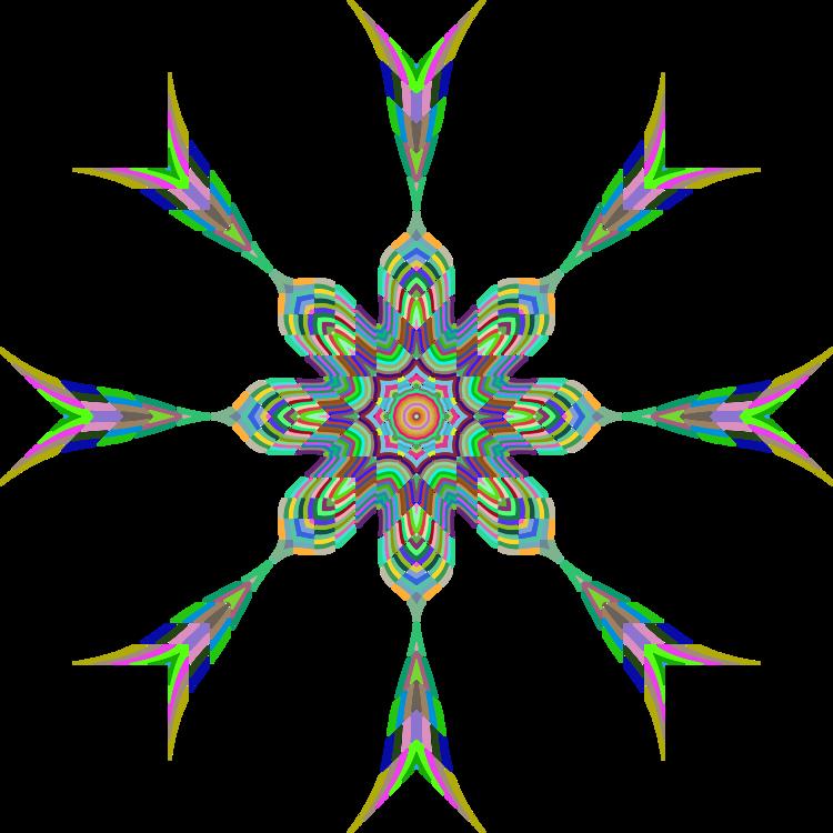 Leaf,Symmetry,Line