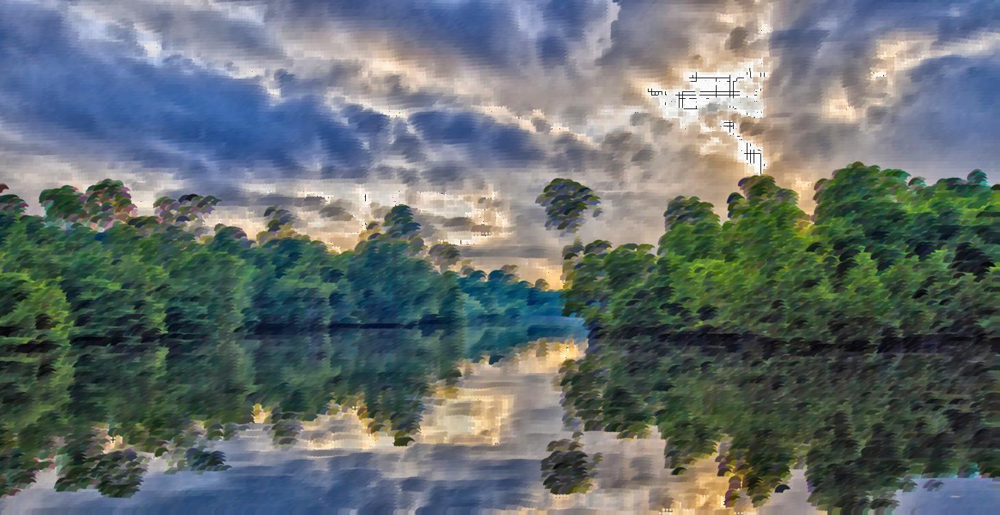 Atmosphere,Nature Reserve,Wetland