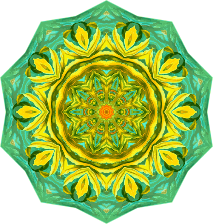 Flower,Sunflower,Symmetry