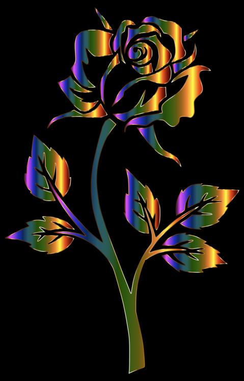 Art,Rose Order,Petal