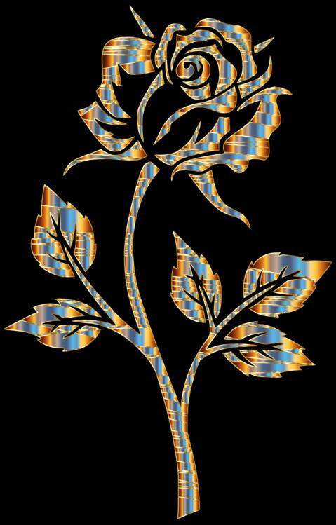 Black Rose Color Iphone Cc0 Plant Flora Leaf Cc0 Free Download