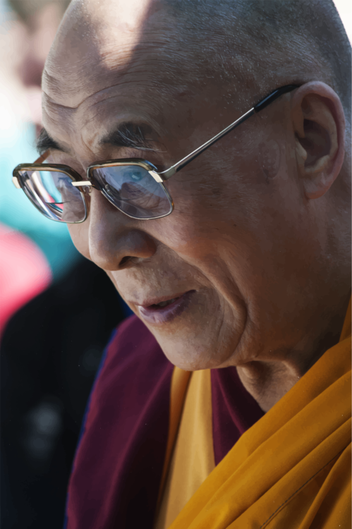 Lama,Sunglasses,Elder