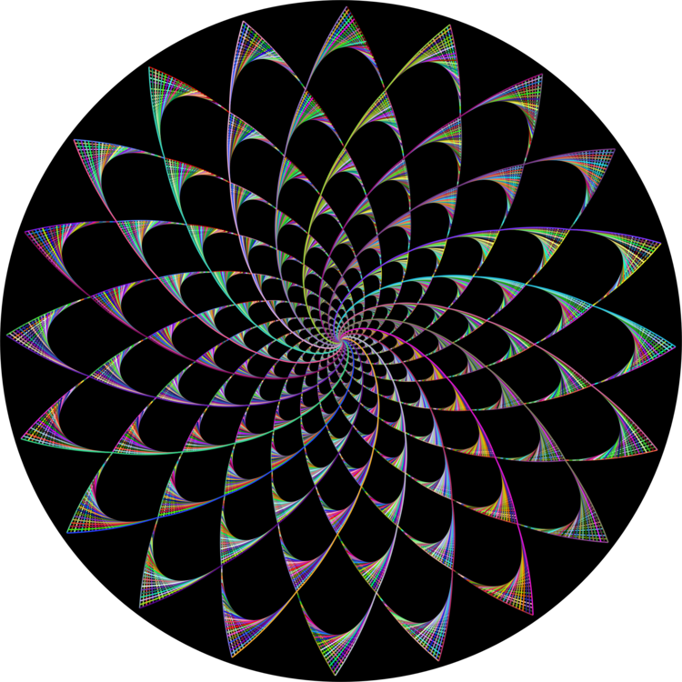 Circle,Spiral,Symmetry