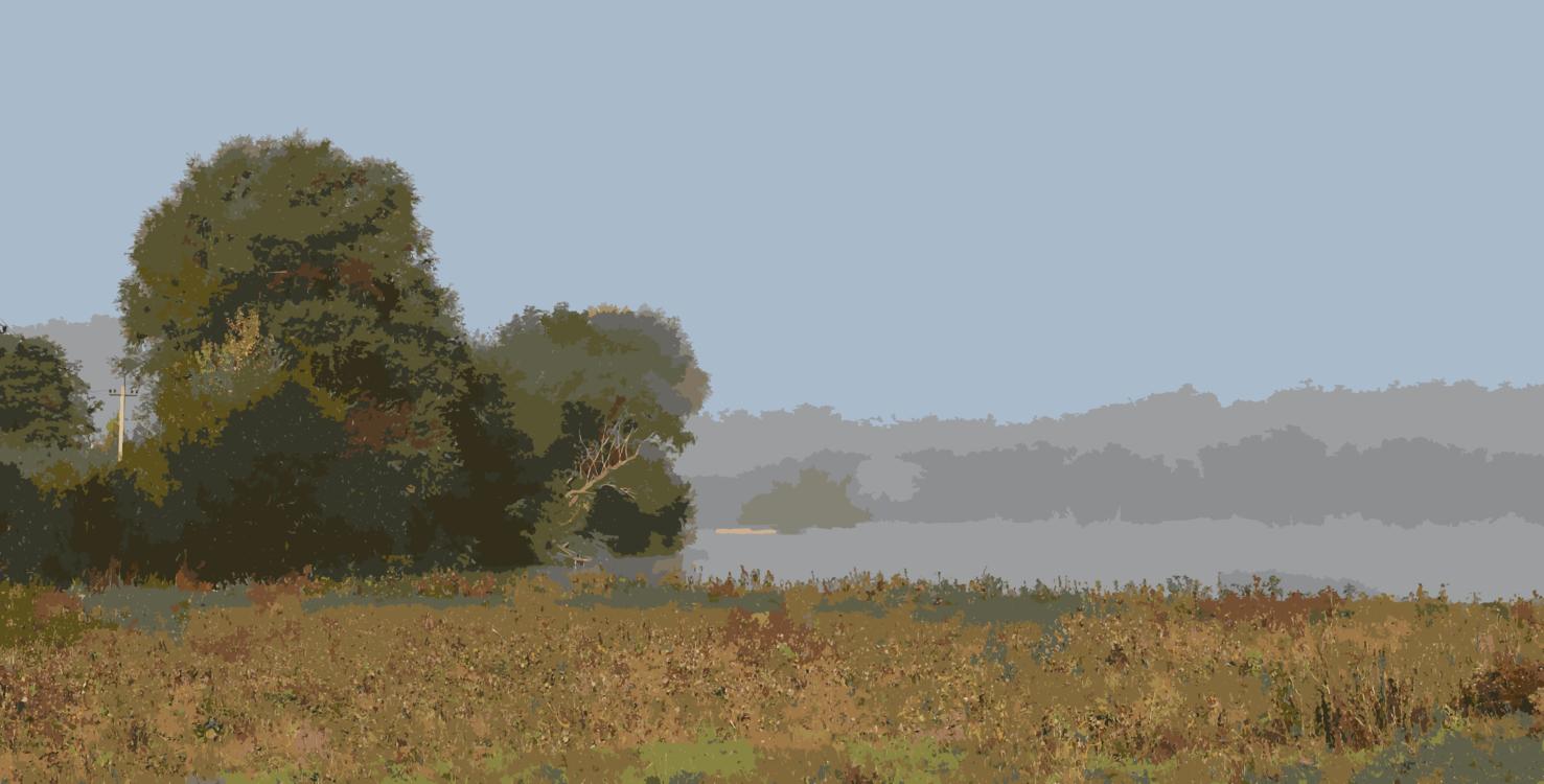 Meadow,Shrubland,Autumn