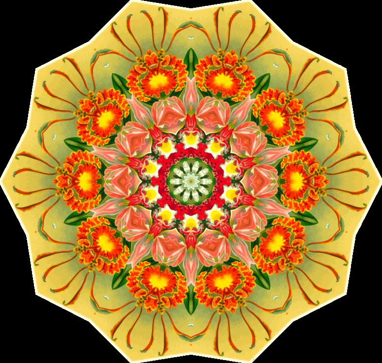 Flower,Petal,Yellow