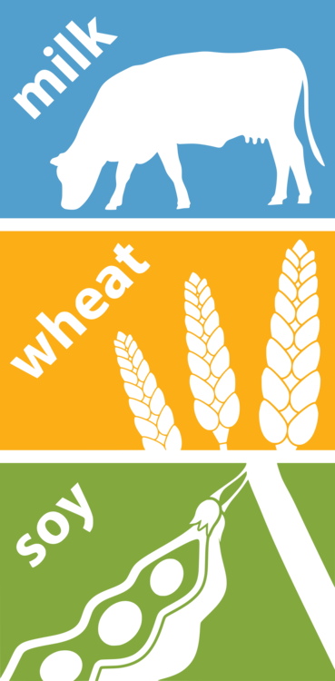 Text,Yellow,Graphic Design
